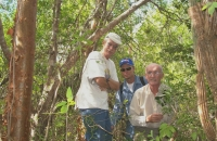 Surveyors Hugh, Cantrell and Wallace
