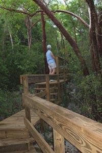 Saltwater Pond Trail near Rebecca's Cave