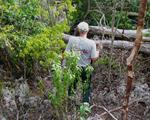 PRSW karst forest