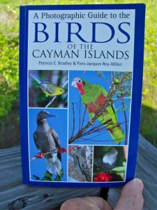 Birds of the Cayman Islands (2013) by Patricia Bradley